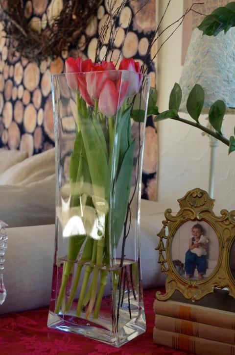 tulip rosaroseblogg