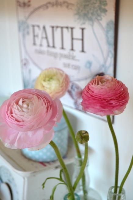 rosaroseblogg ranukl 1