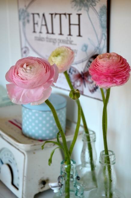 rosaroseblogg faith
