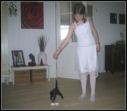 EJ kattunge leker