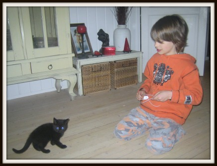 sivert kattunge