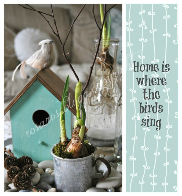 birdhouse card home is vannmerke